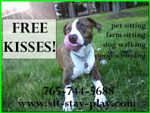pet sitting, dog walking with sit-stay-play Muncie, Indiana