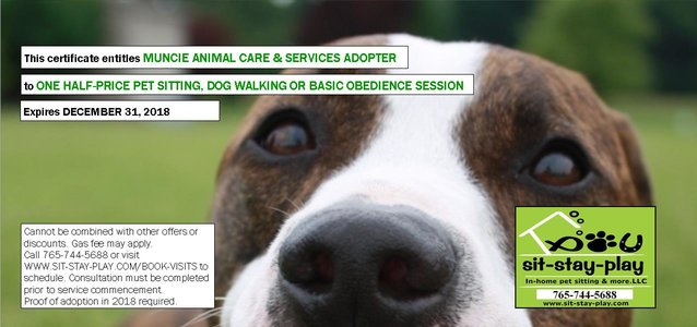 Muncie Animal Care & Services 1/2 Price Pet Sitting, Dog Walking or Basic Obedience Session