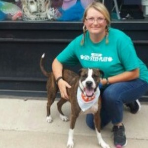 http://www.sit-stay-play.com/5-ways-to-advocate-for-pit-bulls
