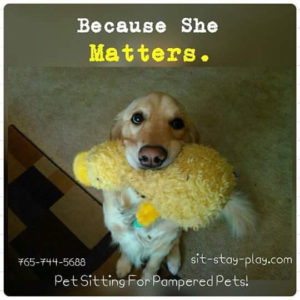 because-she-matters