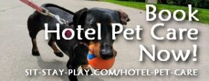 book hotel pet care now