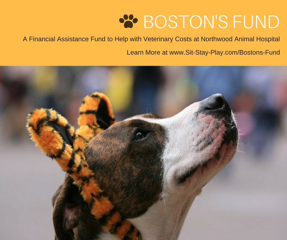 Boston's Fund financial assistance program at Northwood Animal Hospital