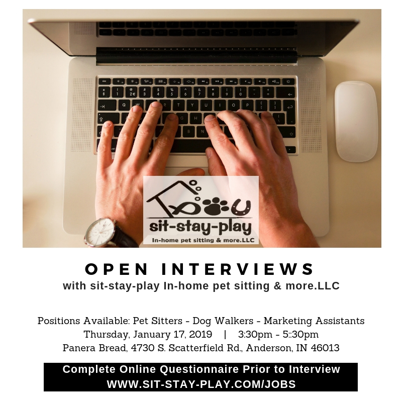 open interviews with sit-stay-play In-home pet sitting & more.LLC