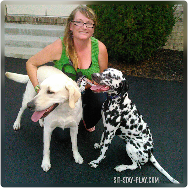 Kelley Stewart of sit-stay-play.com and a Dalmatian and a yellow Labrador dog