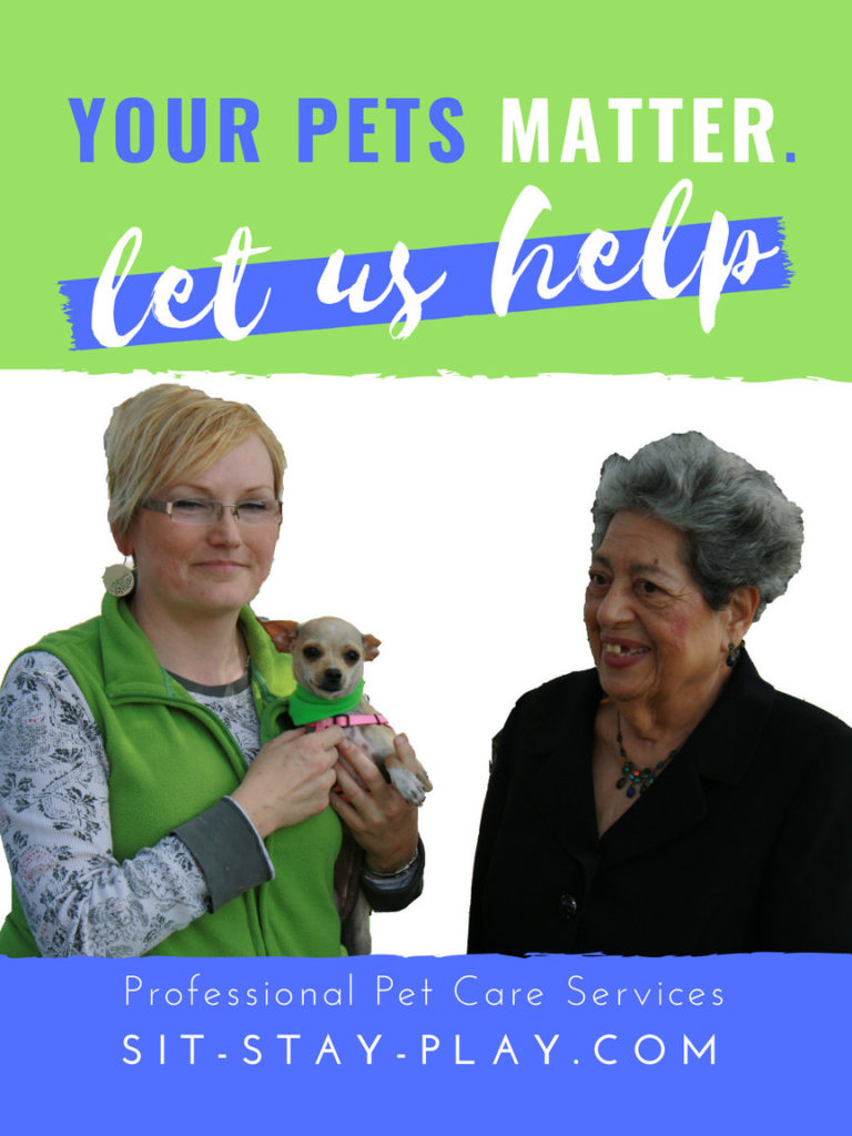we help senior pets and their owners