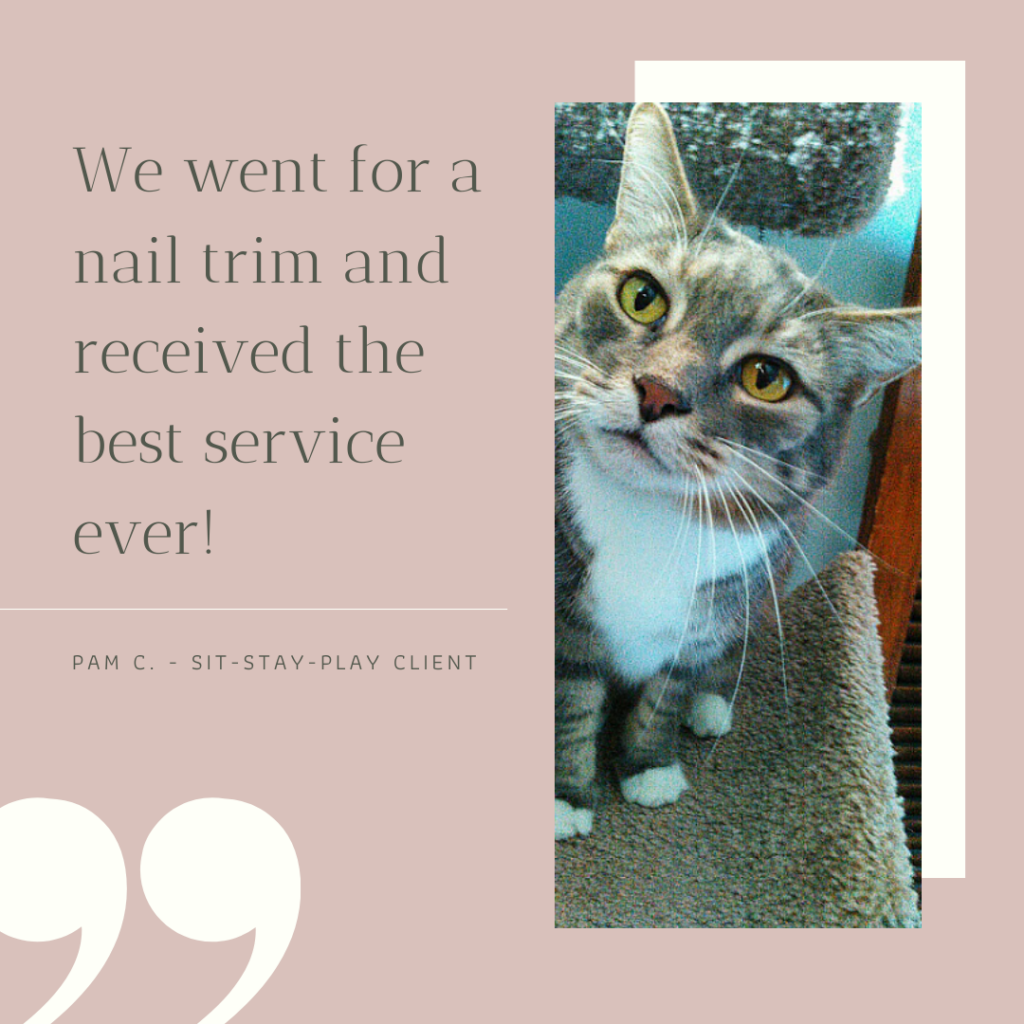 quote from a client that had her cat's nails trimmed